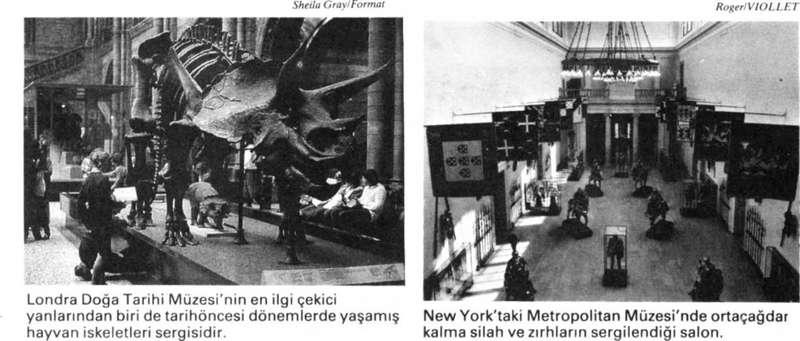 Müzeler Ve Sanat Galerileri | İlk Koleksiyonlar – Müze Türleri – Müzelerin İşlevi – Türkiye'de Müzecilik